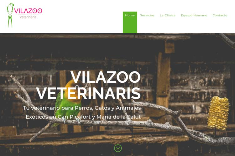Vilazoo Veterinaris